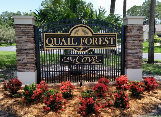 Welcome to Quail Forest